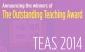 bigbanner-teas2014b