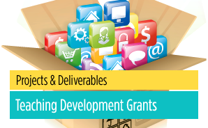 Teaching Development Grants (TDG) Projects
