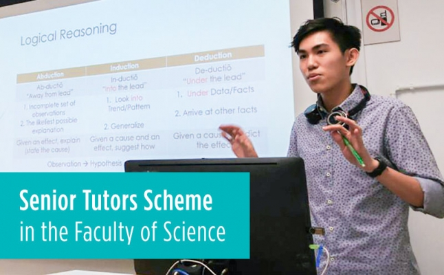 Senior Tutors Scheme in the Faculty of Science