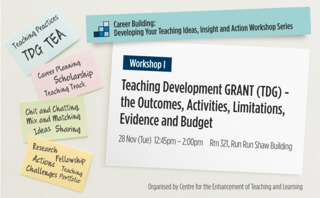 Career Building:Developing Your Teaching Ideas, Insight and Action Workshop Series - Teaching Development Grant (TDG) - the Outcomes, Activities, Limitations, Evidence and Budget